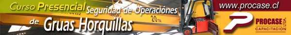 Seguridad de Operación de Grúas Horquilla