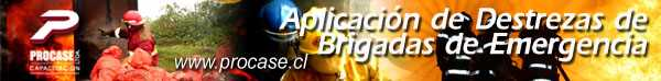 Aplicación de Destrezas de Brigadas de Emergencias