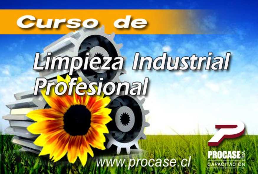 Limpieza Industrial Profesional