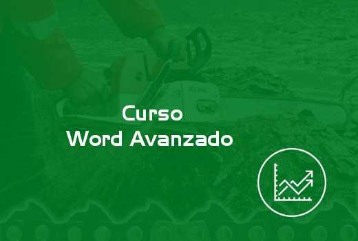 Word Avanzado