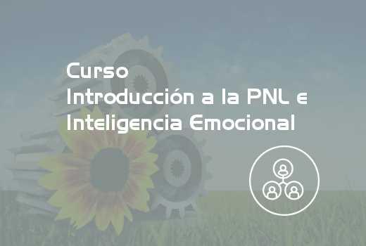 Introducción a la PNL e Inteligencia Emocional
