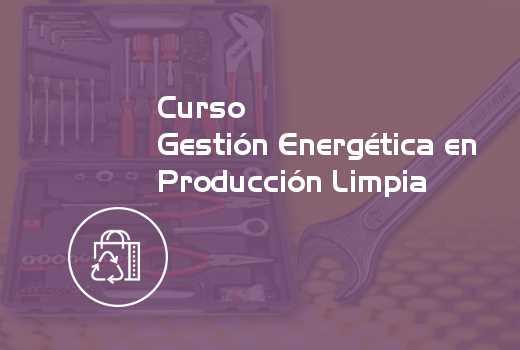 Gestión Energética en Producción Limpia