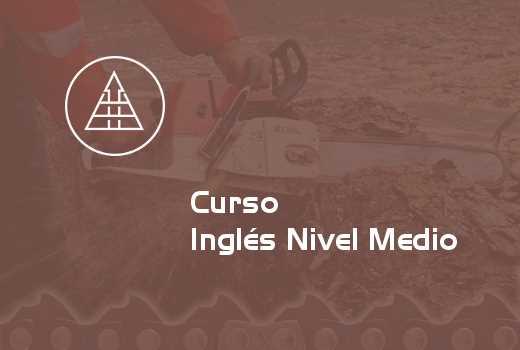 Inglés Nivel Medio