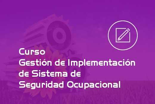 Gestión de Implementación de Sistema de Seguridad Ocupacional