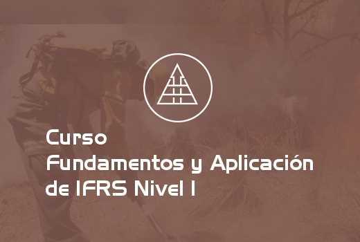 Fundamentos y Aplicación de IFRS Nivel I