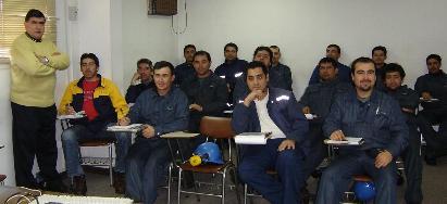 Celulosa Arauco y Constitución S.A.