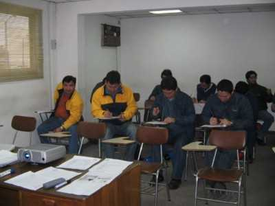 Celulosa Arauco y Constitucion S.A.